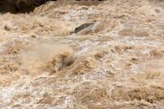 Agua áspera del río Yangzi Fotografía de archivo