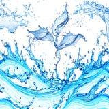 Agua abstracta de la planta Fotografía de archivo libre de regalías