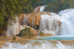 Agua Azul. Waterfalls, Chiapas, Mexico royalty free stock photography