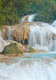 Agua Azul. Waterfalls, Chiapas, Mexico Royalty Free Stock Photos