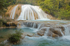 Agua Azul Stock Photo