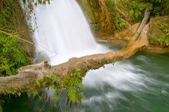 agua azul cascadas de водопад стоковые изображения