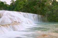 agua azul cascadas de vattenfall Fotografering för Bildbyråer