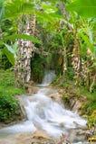 agua azul cascadas de vattenfall Arkivbilder