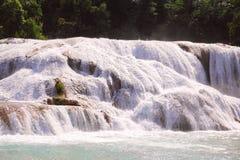 Agua azul cascades I Royalty Free Stock Image