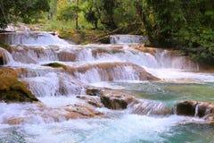 Agua azul cascades III. Agua Azul Waterfall near palenque, mexican state of chiapas stock photos