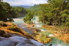 Agua azul cascades IX Royalty Free Stock Images