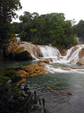 Agua Azul Cascades in Mexican Jungle Stock Photo