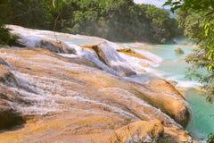 Agua azul cascades XII Stock Photography