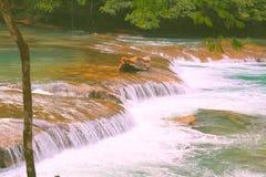 Agua azul cascades XIII. Agua Azul Waterfall near palenque, mexican state of chiapas royalty free stock photo