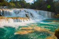 Agua Azul, Chiapas, Palenque, Meksyk Krajobraz na wspaniałej siklawie z turkusowym basenem otaczającym zielonymi drzewami Zdjęcie Royalty Free