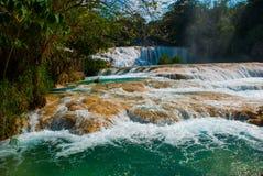 Agua Azul, Chiapas, Palenque, Meksyk Piękny krajobraz z siklawy i turkusu wodą Zdjęcie Royalty Free