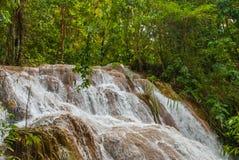 Agua Azul, Chiapas, Palenque, Meksyk Woda płynie przez skał Piękna siklawy sceneria w lesie Obraz Royalty Free