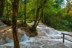 Agua Azul, Chiapas, Palenque, Meksyk Woda płynie przez skał Piękna siklawy sceneria w lesie Fotografia Stock
