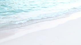 Agua azul clara en la línea de la playa de Bermudas almacen de metraje de vídeo