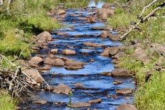 Agua azul fresca que conecta en cascada suavemente abajo de un arroyo imagen de archivo