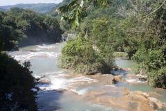 agua azul Mexico siklawa Fotografia Royalty Free