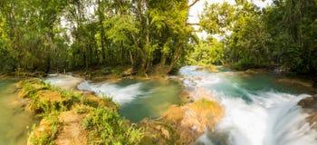 Agua Azul panorama Fotografia Royalty Free