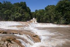 Agua Azul siklawa, Chiapas, Meksyk Fotografia Royalty Free