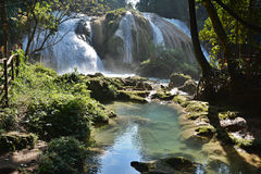 Agua Azul siklawa, półwysep jukatan, Meksyk Obraz Royalty Free