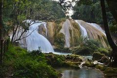 Agua Azul siklawa, półwysep jukatan, Meksyk Obrazy Royalty Free