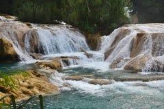 Agua Azul siklawa, półwysep jukatan, Meksyk Obrazy Stock