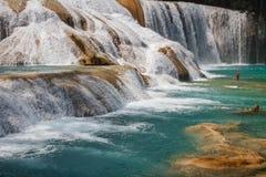 Agua Azul siklawa w Chiapas stanie Fotografia Stock