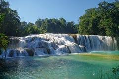 Agua Azul siklawy, Chiapas Zdjęcia Stock