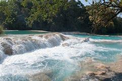 Agua Azul siklawy, Chiapas, Meksyk Obrazy Stock