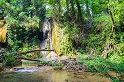 Agua Azul siklawy, Chiapas, Meksyk Obrazy Royalty Free