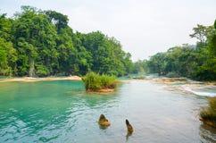 Agua Azul siklawy, Chiapas, Meksyk Zdjęcia Royalty Free