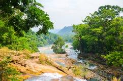 Agua Azul siklawy, Chiapas, Meksyk Obraz Royalty Free