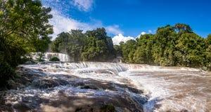 Agua Azul siklawy - Chiapas, Meksyk Zdjęcia Royalty Free