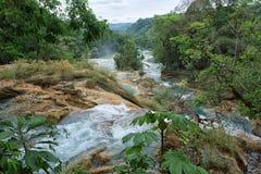 Agua Azul siklawy w Chiapas Meksyk Obrazy Stock