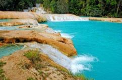 Agua Azul siklawy w Meksyk Obrazy Royalty Free