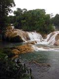 Agua Azul Spada kaskadą w Meksykańskiej dżungli Zdjęcie Stock