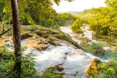 Agua Azul W Chiapas Meksyk Fotografia Stock