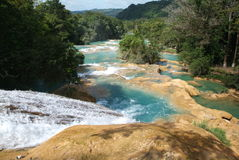 Agua Azul Wasserfall auf Chiapas Stockfoto