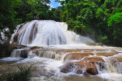 Agua Azul Wasserfall, Mexiko Lizenzfreie Stockfotografie