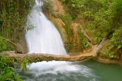 Agua Azul waterfall Stock Photo