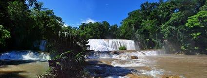 Agua Azul Waterfall, Chiapas, Mexico Royaltyfria Bilder