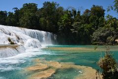 Agua Azul Waterfall Chiapas Mexico royalty-vrije stock foto
