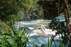 Agua Azul Waterfall Chiapas Mexico stock foto