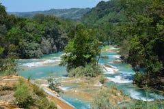 Agua Azul Waterfall Chiapas Mexico stock foto's