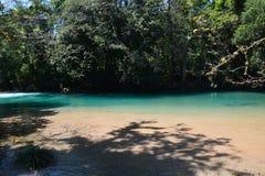 Agua Azul Waterfall Chiapas Mexico royalty-vrije stock afbeelding