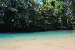 Agua Azul Waterfall Chiapas Mexico royalty-vrije stock fotografie