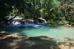 Agua Azul Waterfall Chiapas Mexico imagenes de archivo