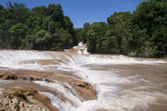 Agua Azul Waterfall, Chiapas, Mexico Royalty Free Stock Photography