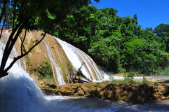 Agua Azul Waterfall, Chiapas, Mexico Royalty Free Stock Photos
