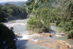 Agua azul waterfall Mexico Royalty Free Stock Photography